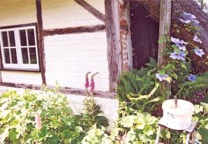 Renovating Wellow Wood